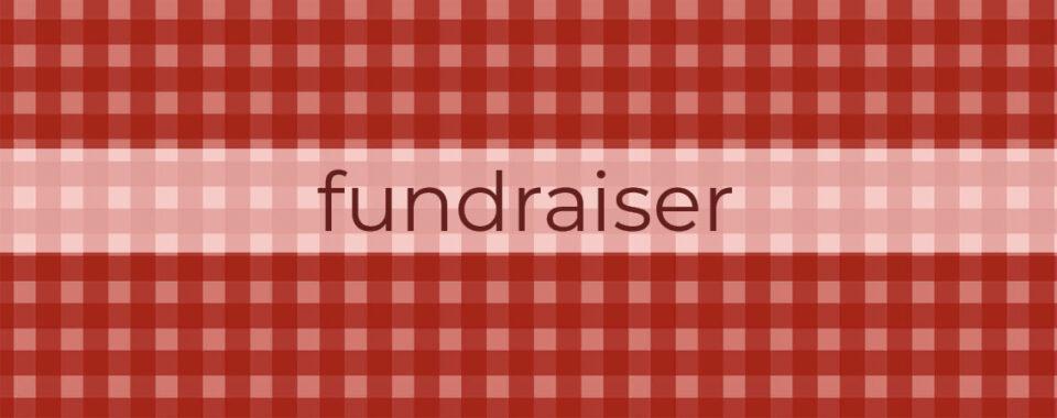 Melissa Philson Fundraiser